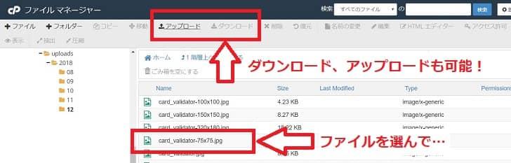 ファイルのダウンロードとアップロード