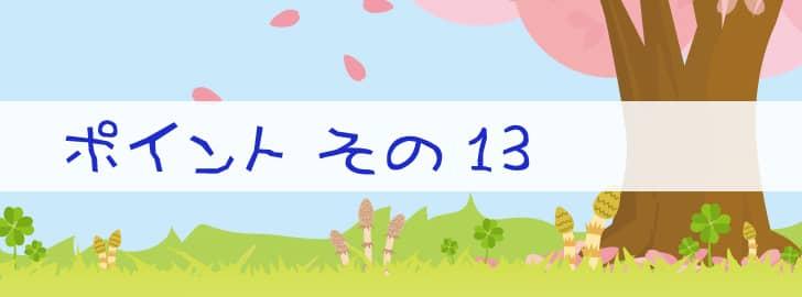 ポイント13